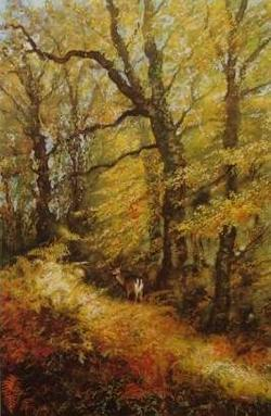 Andrew Bailey - Autumn Gold