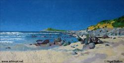 Nigel Sutton - Whitesands Bay